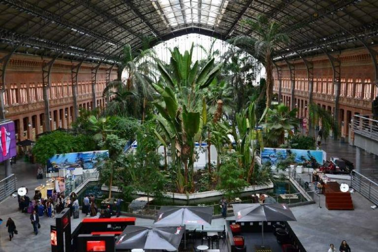 free things to do in Madrid Atocha Train Station
